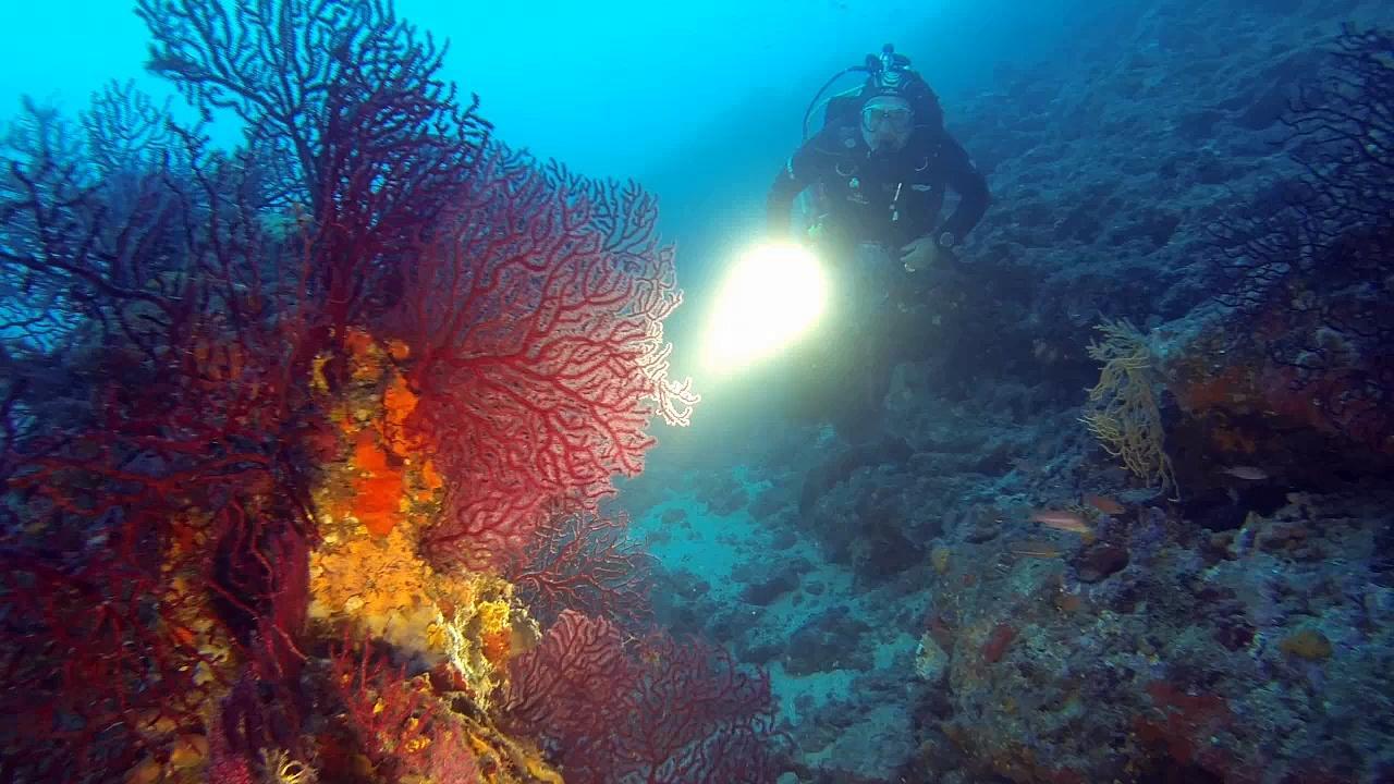 La Grotte à Pérez, le Labo Sous-Marin de Jean-Marie Pérès
