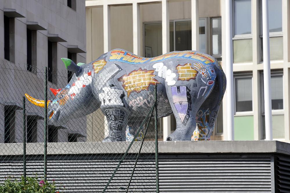 Le Rhinocéros Nina
